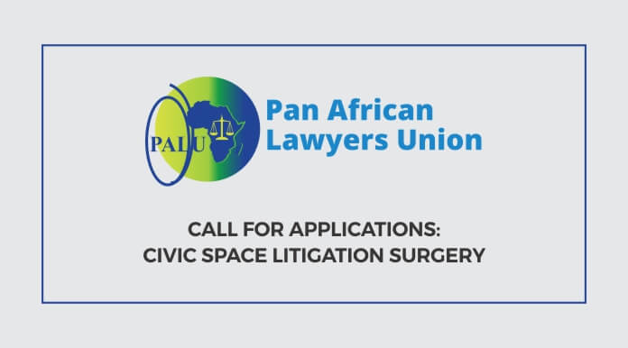 Call for Applications: Civic Space Litigation Surgery